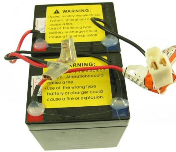 Amazon.com : Razor E100/E125/E150 Battery Set : Sports