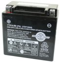 Universal Parts 12 Volt 12 Amp YTX14-BS Battery